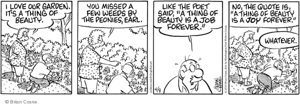 Comic Strip Brian Crane  Pickles 2010-04-08 poet