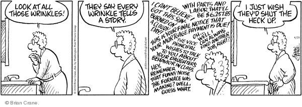 Comic Strip Brian Crane  Pickles 2010-04-21 bad behavior