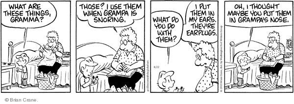 Comic Strip Brian Crane  Pickles 2010-04-22 bedroom