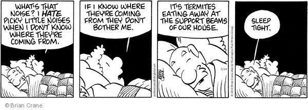 Comic Strip Brian Crane  Pickles 2010-05-14 bedroom
