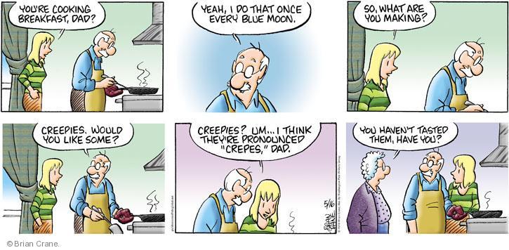 Comic Strip Brian Crane  Pickles 2010-05-16 husband