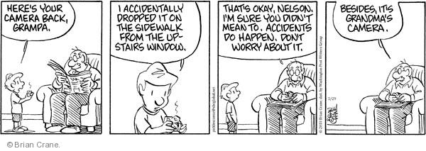 Comic Strip Brian Crane  Pickles 2010-05-29 grandmother