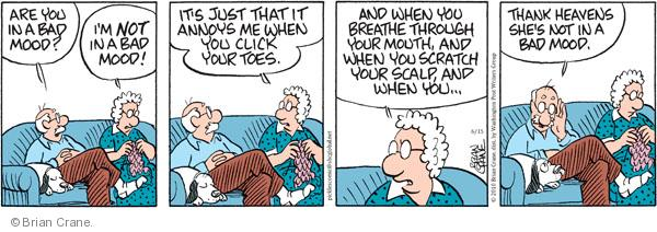Comic Strip Brian Crane  Pickles 2010-06-15 married couple