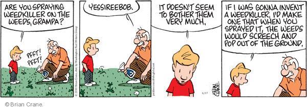 Comic Strip Brian Crane  Pickles 2010-06-17 invention