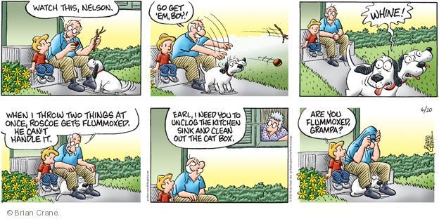 Cartoonist Brian Crane  Pickles 2010-06-20 honey