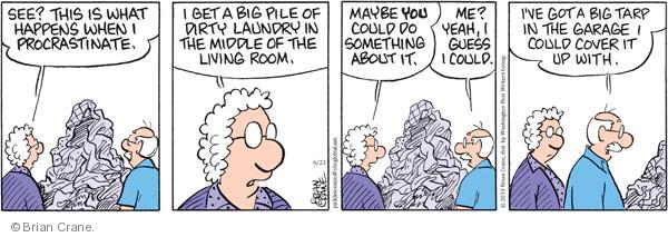 Comic Strip Brian Crane  Pickles 2010-06-23 dirty laundry