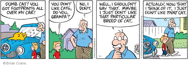 Comic Strip Brian Crane  Pickles 2010-07-09 grandpa
