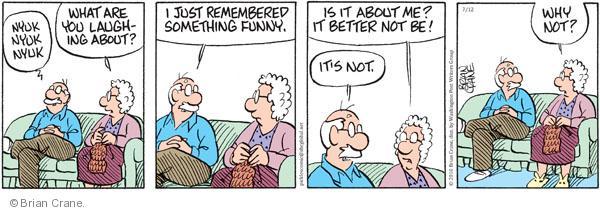 Comic Strip Brian Crane  Pickles 2010-07-12 remembrance