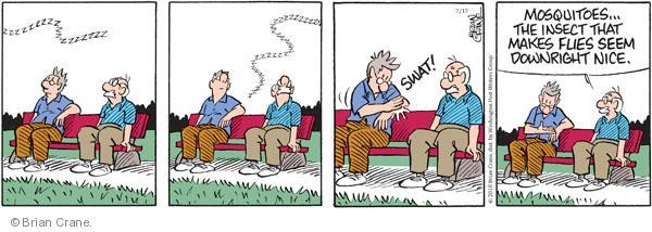 Comic Strip Brian Crane  Pickles 2010-07-17 mosquito bite