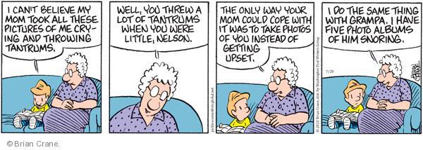 Comic Strip Brian Crane  Pickles 2010-07-20 mom