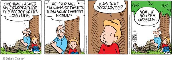Comic Strip Brian Crane  Pickles 2010-07-24 advice