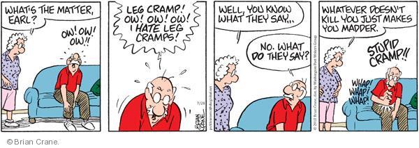 Comic Strip Brian Crane  Pickles 2010-07-28 doesn't matter