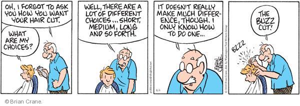 Comic Strip Brian Crane  Pickles 2010-08-04 buzz