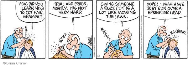 Comic Strip Brian Crane  Pickles 2010-08-05 over