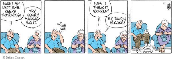 Comic Strip Brian Crane  Pickles 2010-09-03 rub