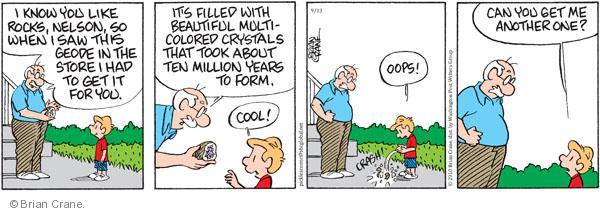 Comic Strip Brian Crane  Pickles 2010-09-13 rock