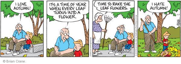 Comic Strip Brian Crane  Pickles 2010-10-09 rake leaves