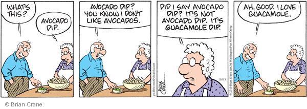 Comic Strip Brian Crane  Pickles 2010-10-13 guacamole