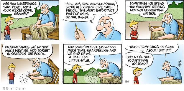 Comic Strip Brian Crane  Pickles 2010-10-24 grandson