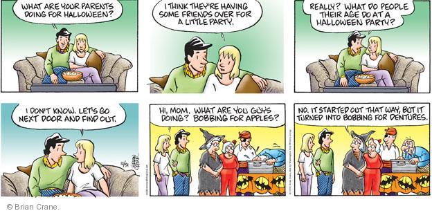 Comic Strip Brian Crane  Pickles 2010-10-31 senior citizen