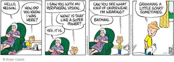 Comic Strip Brian Crane  Pickles 2010-11-10 underwear