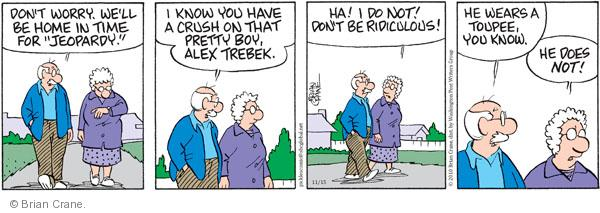 Comic Strip Brian Crane  Pickles 2010-11-15 husband