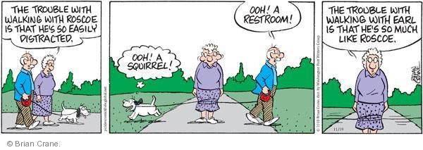 Comic Strip Brian Crane  Pickles 2010-11-19 behavior