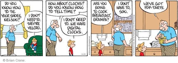 Comic Strip Brian Crane  Pickles 2010-11-20 grandpa