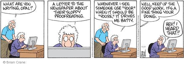 Comic Strip Brian Crane  Pickles 2010-11-27 sloppy