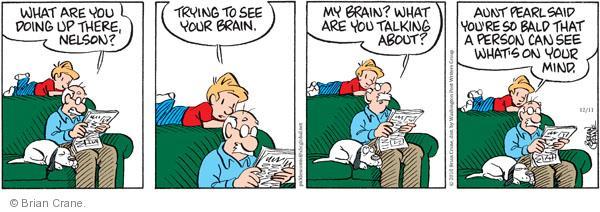 Comic Strip Brian Crane  Pickles 2010-12-11 grandchild