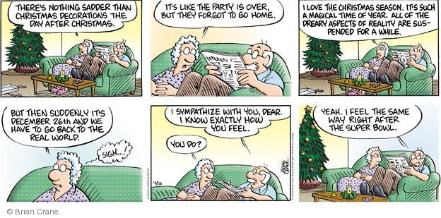 Comic Strip Brian Crane  Pickles 2010-12-26 Super Bowl