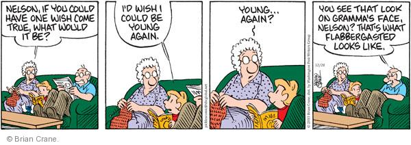 Comic Strip Brian Crane  Pickles 2010-12-28 grandmother