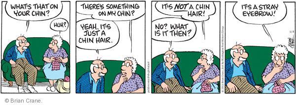 Comic Strip Brian Crane  Pickles 2011-01-08 hair