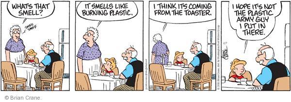 Comic Strip Brian Crane  Pickles 2011-02-07 guy