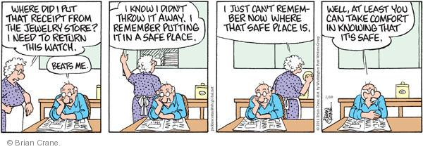 Comic Strip Brian Crane  Pickles 2011-02-10 memory
