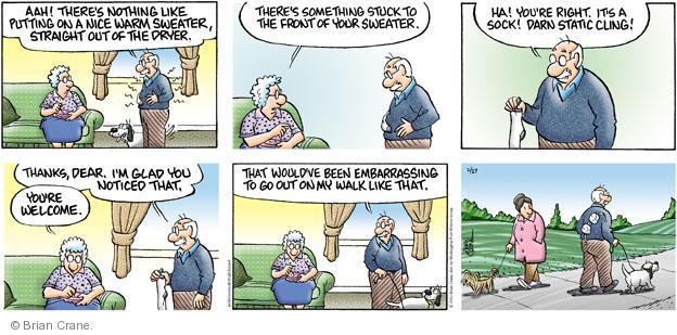 Comic Strip Brian Crane  Pickles 2011-02-27 husband
