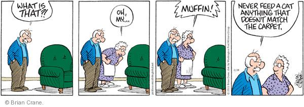 What is that?! Oh, my … Muffin! Never feed a cat anything that doesnt match the carpet.