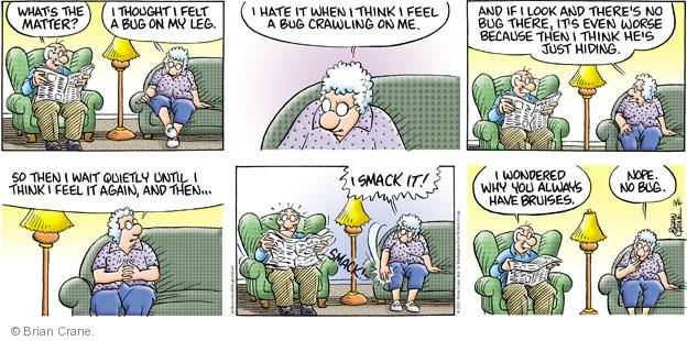 Comic Strip Brian Crane  Pickles 2011-03-06 worse