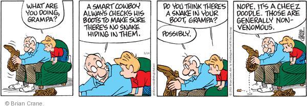 Comic Strip Brian Crane  Pickles 2011-03-14 possibly