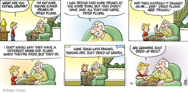 Comic Strip Brian Crane  Pickles 2011-04-10 store
