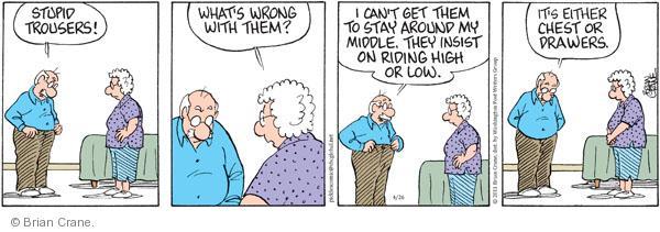 Comic Strip Brian Crane  Pickles 2011-04-26 drawer