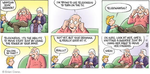 Comic Strip Brian Crane  Pickles 2011-05-01 grandmother