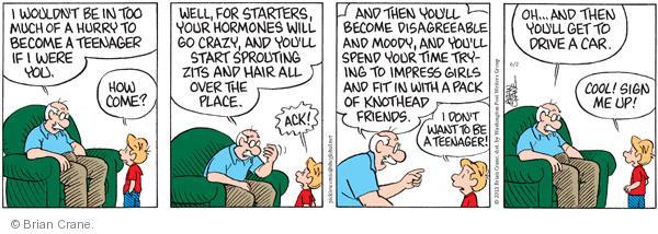 Comic Strip Brian Crane  Pickles 2011-06-02 disagreeable