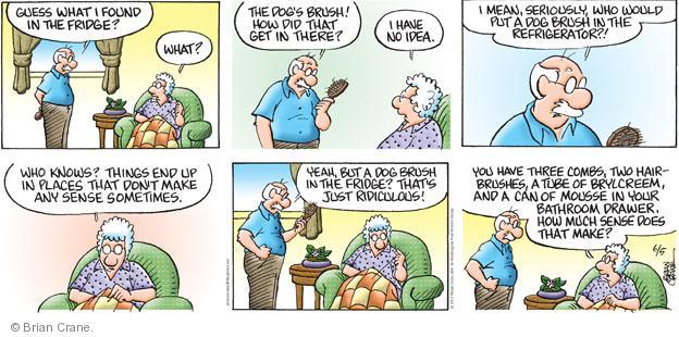 Comic Strip Brian Crane  Pickles 2011-06-05 drawer