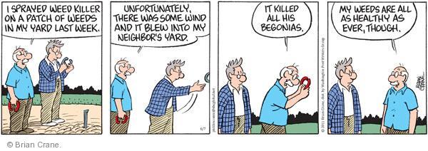Comic Strip Brian Crane  Pickles 2011-06-07 begonia