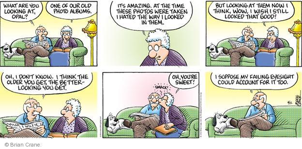 Comic Strip Brian Crane  Pickles 2011-06-12 get old