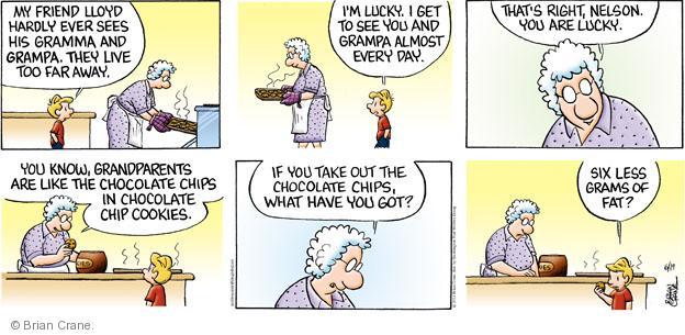 Cartoonist Brian Crane  Pickles 2011-06-19 chocolate chip cookie