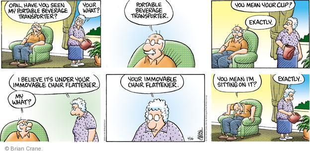 Cartoonist Brian Crane  Pickles 2011-06-26 beverage