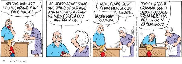 Comic Strip Brian Crane  Pickles 2011-07-01 grandmother