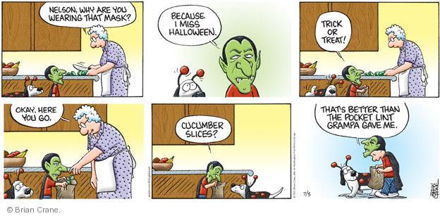 Comic Strip Brian Crane  Pickles 2011-07-03 seasonal